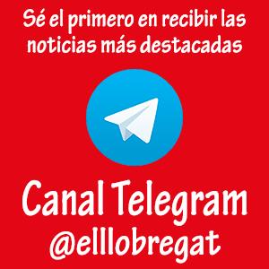 Banner Telegram