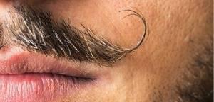 Llegan los bigotes contra el cancer de próstata. ¡Bienvenido Movember!