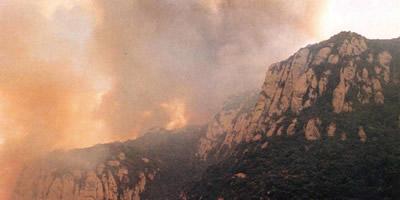 5.000 hectáreas se quemaron en Montserrat en 1986