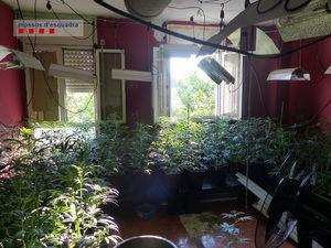 Localizan una plantación de marihuana en un piso del Prat incendiado donde vivía una familia con seis menores