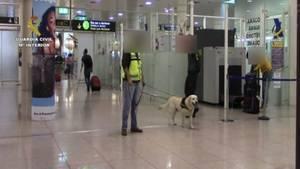La Guardia Civil interviene seis kilos de cocaína en el Aeropuerto de Barcelona – El Prat
