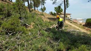 La Diputació reforça les mesures d'autoprotecció en urbanitzacions contra incendis forestals