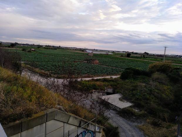 Tierras cercanas a la Cooperativa Agrària Santboiana.