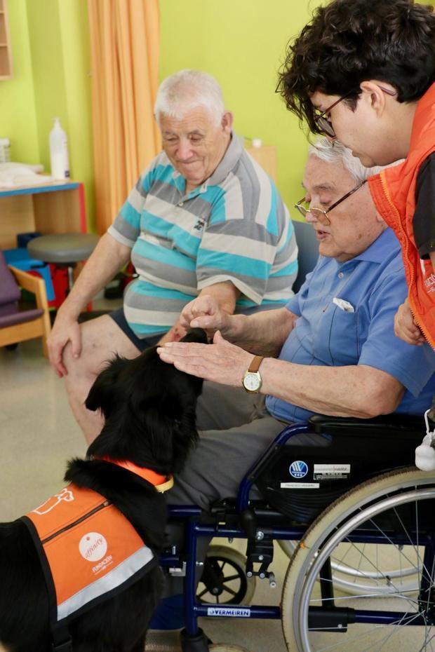 Los perros ayudan en terapias con gente mayor.
