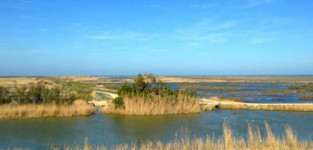 Marismas del Delta del Ebro (Foto: @Onlyreflex)