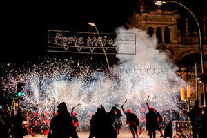 Pallejà celebra un ple extraordinari sobre el coronavirus a petició de tres grups de l'oposició