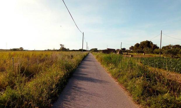 """El Parc Agrari reivindica """"inversiones urgentes"""" para garantizar su supervivencia tras la pandemia de Covid-19"""