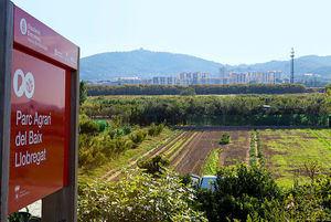 El AMB entra a formar parte del Consorci del Parc Agrari y de los Espais Naturals del Delta del Llobregat