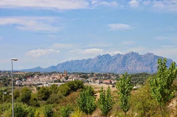 Sant Esteve de Sesrovires, vinyes del Llobregat