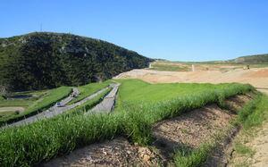 Ja es prenen accions per preservar el patrimoni verd del Baix, excepte a L'H