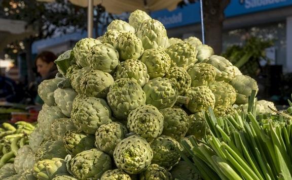 La temporada de la alcachofa Prat cierra con más de 350.000 kilos servidos a tiendas y restaurantes