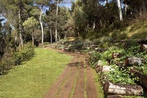 'El camí del bosc' en el cementerio de Roques Blanques en el Papiol.