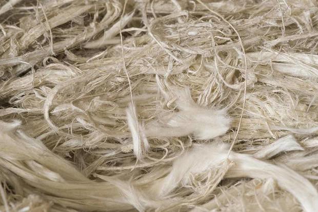 Las fibras de amianto provocan afectaciones respiratorias diversas.