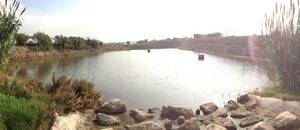 L'ACA posa a informació pública el projecte de millores en el funcionament de la bassa de Sant Vicenç dels Horts