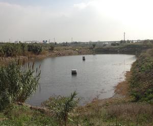 Balsas de recarga de los acuíferos del Llobregat en Sant Vicenç dels Horts