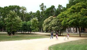 Cornellà aposta pels espais Verds
