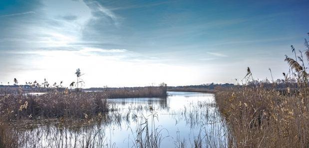 """El Prat ratifica que el Eixample Sud """"no afecta a ningún espacio natural ni agrícola protegido"""""""