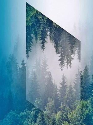 La sostenibilidad en un universo virtual