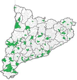 Municipis de Catalunya que han estat representats a la nova campanya de l'OAC. Del Baix, s'observen sis municipis m�s L'Hospitalet. Abans, ja havien participat sis grans ciutats. En total, doncs, 13 | OAC