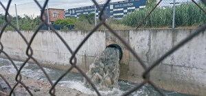 Los continuos vertidos de aguas fecales castigan la biodiversidad de Castelldefels
