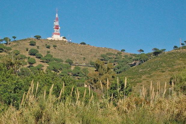 El borde exterior de Collserola podrá destinarse a uso agrícola y ganadero