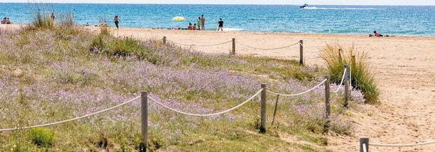 Las playas del Baix presumen de una imagen aún más natural y sostenible