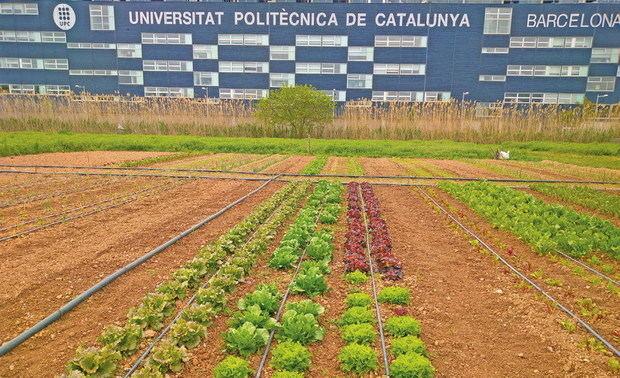 L'EEABB s'alinea amb els objectius de desenvolupament sostenible de l'ONU