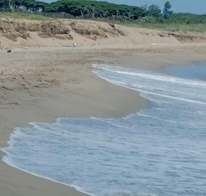 Una barrera artificial para regenerar el litoral del Baix
