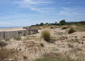 La Platja de Viladecans, un paradís dunar