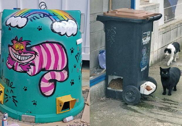 Este contenedor tiene gato encerrado:¿es un Cathotel o es un CatDonalds?