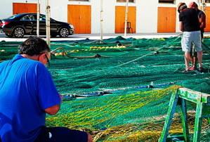 'Nodrir la Ciutat': El mar s'ofega sense un consum responsable de peix