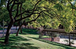 Els reptes de futur de Cornellà es centren en superar la crisi i pintar de verd la ciutat