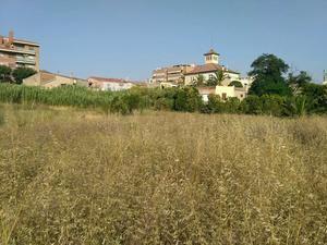Sant Vicenç cederá los terrenos agrícolas en desuso a los aparceros que quieran trabajarlos