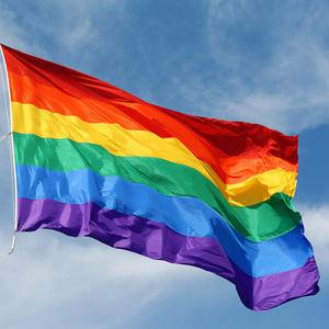 El Consell Comarcal creará un servicio de atención integral LGBTI