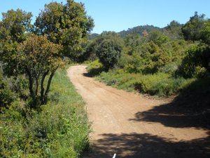 Sant Just exige civismo en las excursiones a Collserola por la expansión del covid-19