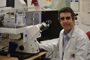 El científic Manel Esteller descobreix una causa de discapacitat intel·lectual i de l'autisme
