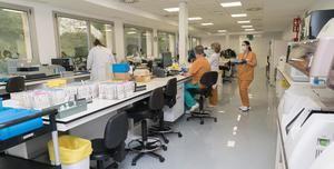 El Hospital de Bellvitge estrena un nuevo Laboratorio de Inmunología más eficaz y competitivo