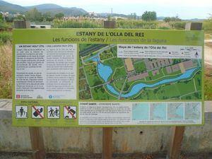 La Olla del Rei es un espacio naturalizado de Castelldefels que hace la función de balsa de laminación.