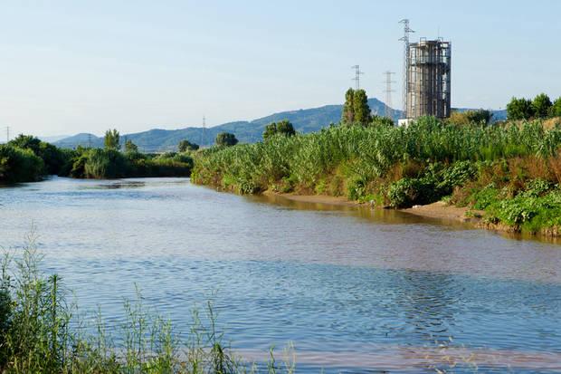 El riu Llobregat, escollit per repoblar les anguiles