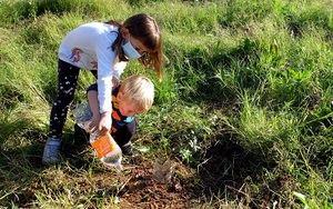 Árboles autóctonos contra la urbanización de la Riera de la Bòbila de Sant Boi