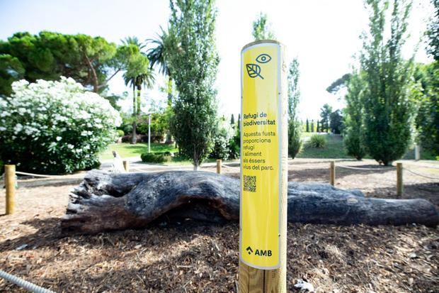 Los árboles caídos por los temporales se convierten en refugios para la diversidad en 17 parques del Baix