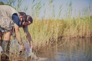 Liberación en una balsa del delta del llobregat de Fartets criados en Zoo de Barcelona