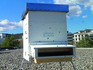 Una de las tres colmenas instaladas en Viladecans para medir la contaminación.