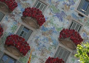 Carme Polo desvela en su última publicación los secretos de las rosas y los libros de Sant Jordi