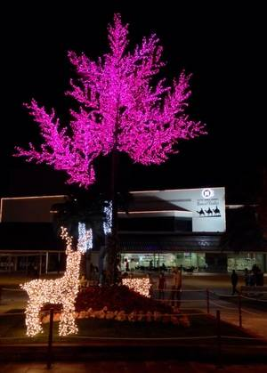 Detienen 'in fraganti' a dos ladrones por robar un ciervo navideño de Sant Andreu de la Barca