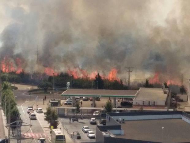 Una veintena de dotaciones de Bomberos trabaja en un incendio forestal en Sant Vicenç dels Horts