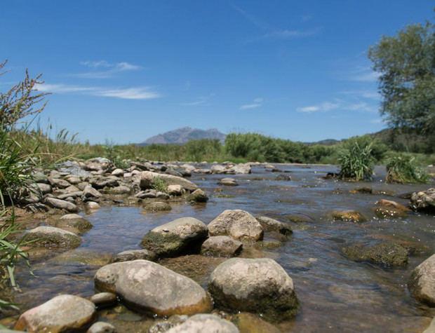 La Agencia Catalana del Agua (ACA) asegura que el vertido del viernes en el río no comporta ningún riesgo para la población