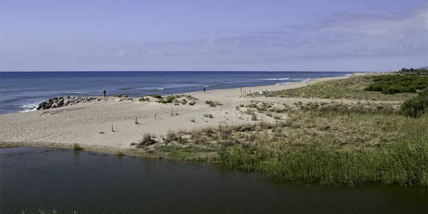 Ecologistes en Acció reconeix la qualitat natural de les platges de Viladecans
